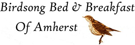 bed and breakfast amherst ma birdsong bed breakfast of amherst a cozy bed and