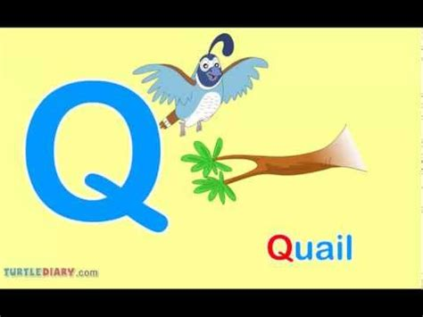 9 Letter Words Starting With Q Toddler Words Words Starting With Q