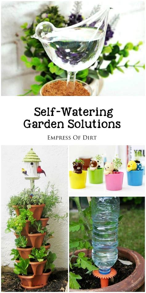 self watering plants best 25 self watering bottle ideas on pinterest self