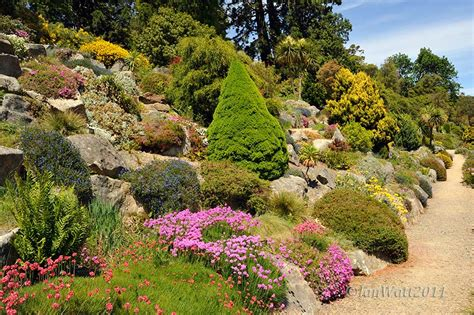 dunedin botanic gardens dunedin botanical botanical garden photography