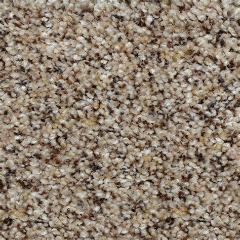 home decorators carpet home decorators collection carpet sle beach club i color kingsley texture 8 in x 8 in