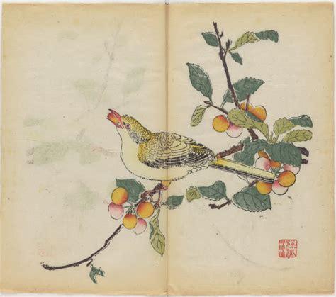 Sketches O Que São by O Livro Em Cores Mais Antigo Do Mundo Foi Disponibilizado