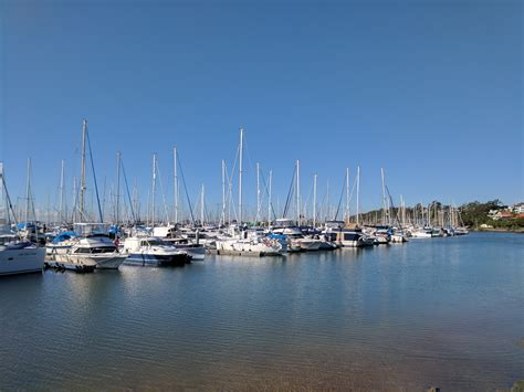 fishing at manly boat harbour downtown toyota moreton bay fishing classic brisbane