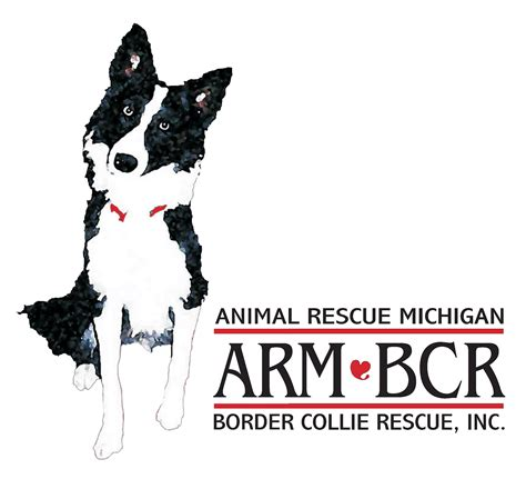shelters in michigan animal rescue michigan border collie rescue pet shelter in romulus mi