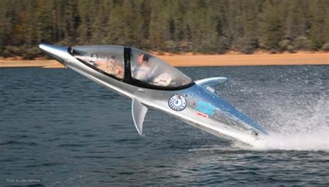 dolphin boat dolphin power boat