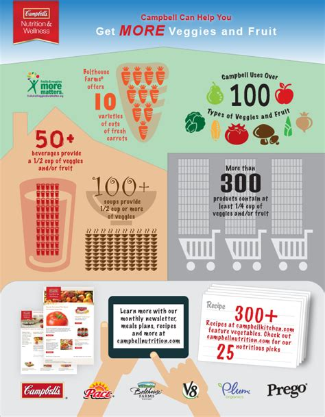 fruit v vegetables nutrition vegetables and fruits infographic