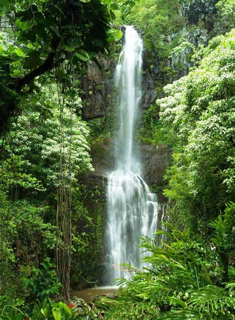 road  hana maui waterfalls  waterfalls  maui