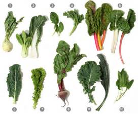 Garden Of Greens A Visual Guide To Cooking Greens Epicurious