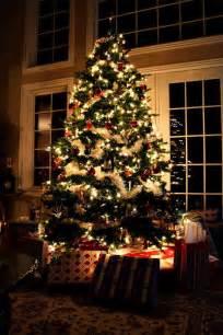 Beautiful Christmas Tree by 20 Beautiful Christmas Trees Photographyphotography Heat