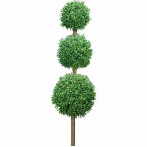 faux outdoor topiary 8 foot outdoor artificial boxwood topiary w