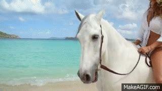 commercial girl riding horse hannah davis riding her horse directv commercial on make