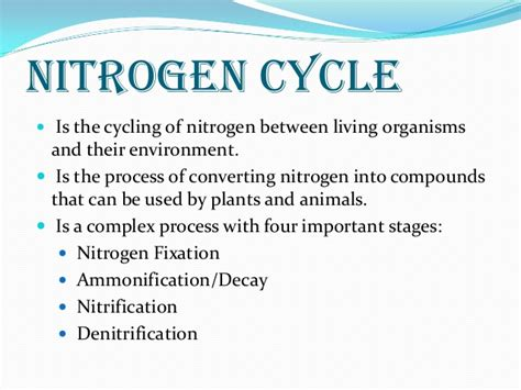 nitrogen cycle how do human activities affect the