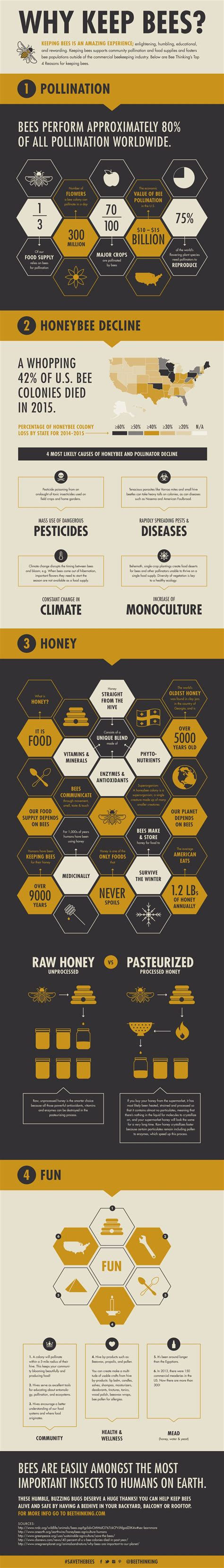 How To Keep Bees Or Bee Keeping In Rhode Island why keep bees bees beekeeping and environment