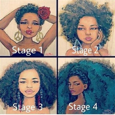 stages of natural hair stages of natural hair growth natural hair colored hair