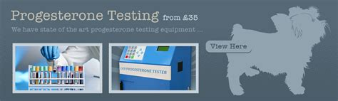 progesterone test for dogs lancashire k9 services