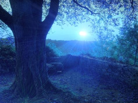 calming blue calming sunset sunsets nature background wallpapers on