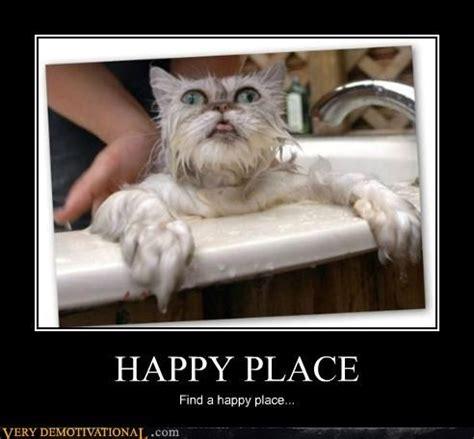Happy Place Meme - happy place funny pinterest