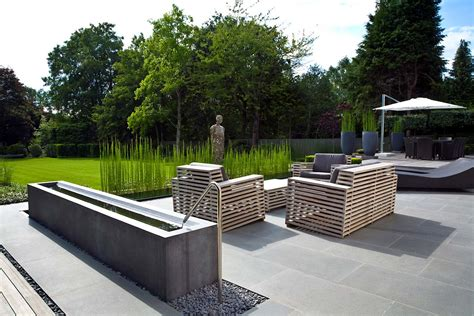 modern landscaping the paper mulberry garden plants equisetum
