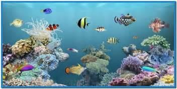 Live fish aquarium screensaver   Download free