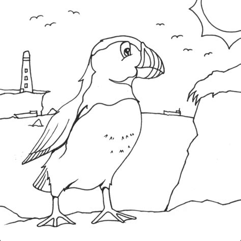 puffin bird coloring page puffin colouring