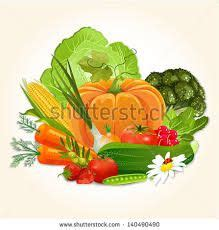 google images vegetables design vegetables google search design vegetables