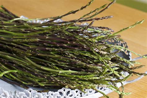 come cucinare gli asparagi selvatici gli asparagi selvatici silvio cicchi