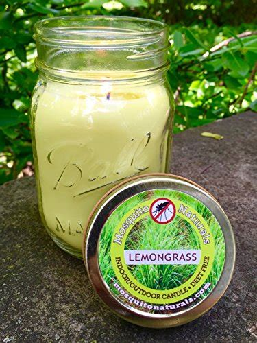 Jar Citronella L by Mosquito Repellent Candle Deet Free 88 Hour