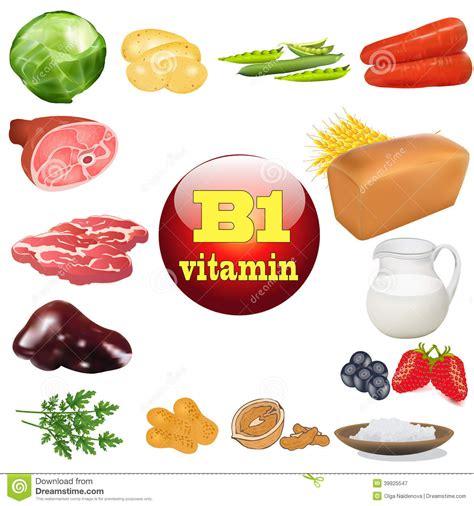 vegetables w b12 vitamina b uno en productos vegetales y animales el origen