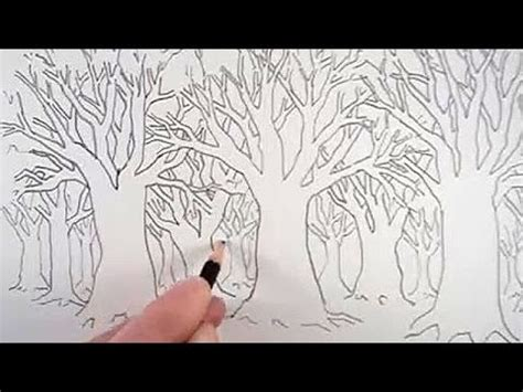 draw tree forest