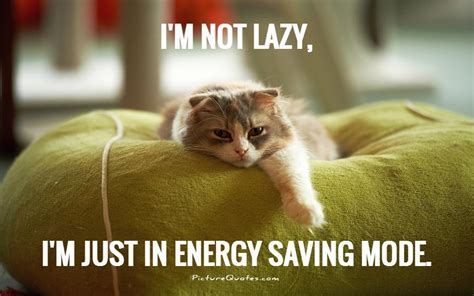 Lazy Day Meme - i m not lazy i m just in energy saving mode picture quotes