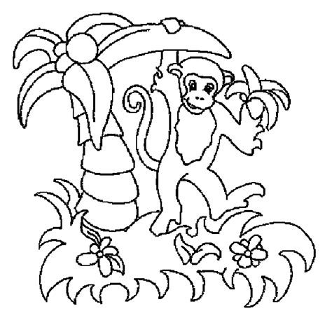 Safari Coloring Pages Coloring Pages For Kids Safari Coloring Pages