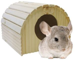 chinchilla house chinchilla house www pixshark com images galleries with a bite