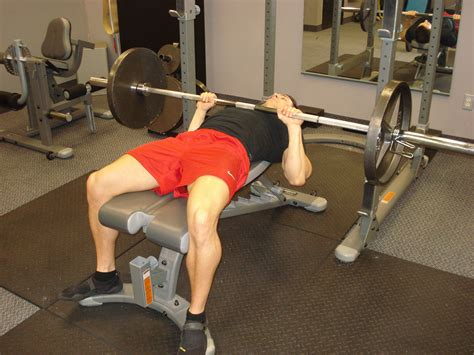 bb bench press 28 images exercise database push train