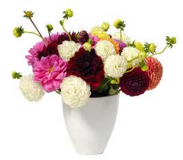 buy flowers send flowers to the us with free delivery