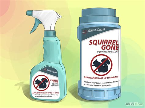 how to get rid of squirrels 12 steps with pictures