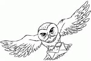 coloriage hibou harry potter 224 imprimer sur coloriages