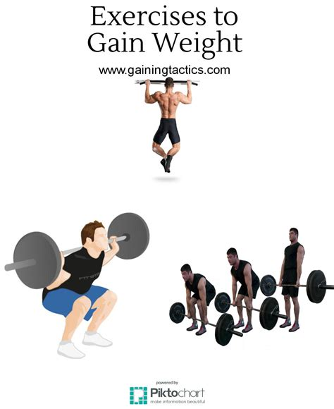 top exercises to gain weight gaining tactics