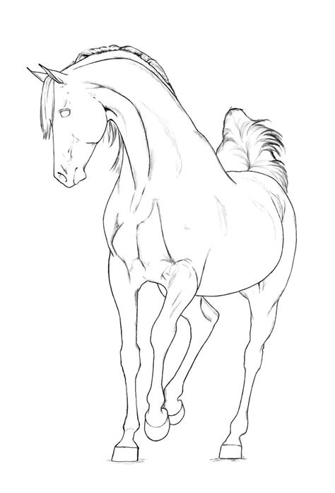Arabian Stallion Lineart By Akuinnen24 On Deviantart Biscuit The Coloring Pages
