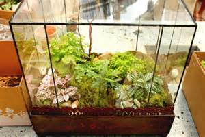 Sun Room Decor Diy Terrariums With Terrain