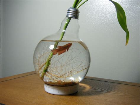 Handmade Light Bulbs - large lightbulb fishbowl