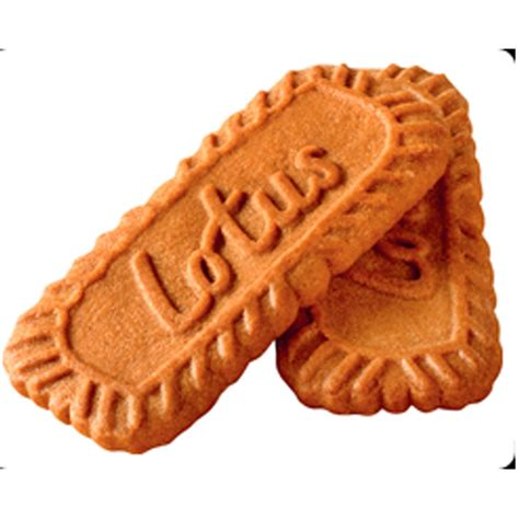 biscuit the 300 individually wrapped caramelised lotus biscuits biscuits supplies simply