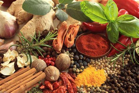 erbe in cucina erbe e spezie in cucina quali usare per migliorare la salute