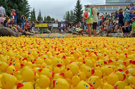 rubber st events a breckenridge tradition the great rubber duck races