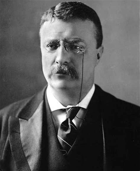 biography theodore roosevelt how did theodore roosevelt die what is the meaning of