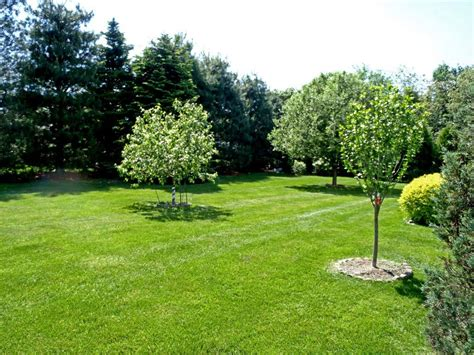 Image Gallery Lawn Landscaping Lawn Care And Landscaping
