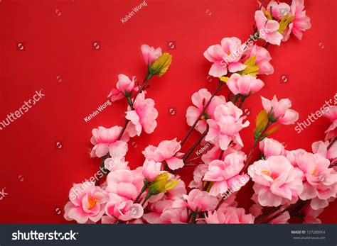 new year flowers plum flowers packet new stock photo 127289054
