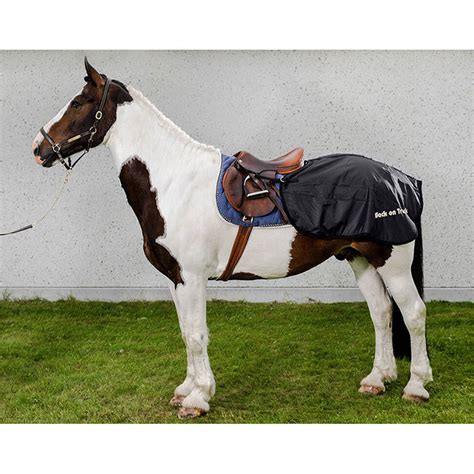 Back On Track Rugs For Horses by Back On Track Rug Loin Horze