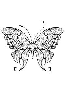 Monarch Butterfly Coloring Page & Coloring Book...ADULT