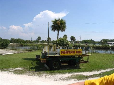 everglades boat rentals ochopee fl wooten s everglades airboat tour reviews ochopee