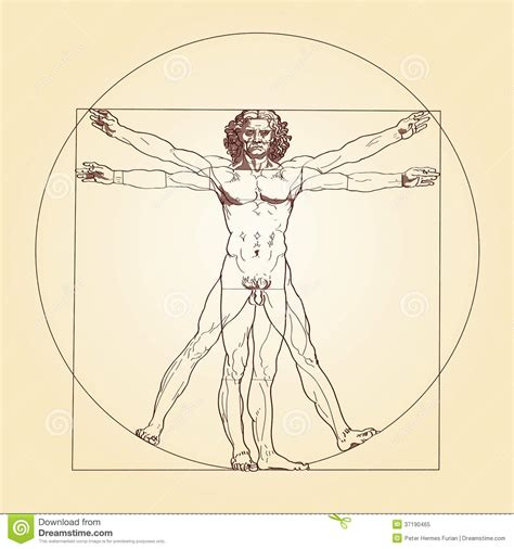 Vitruvian Man And Woman